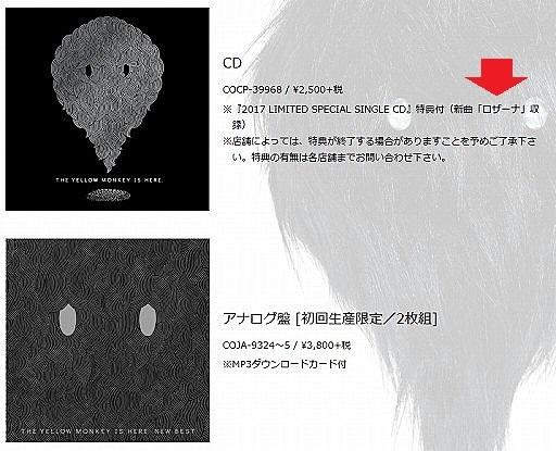 CD6.jpg